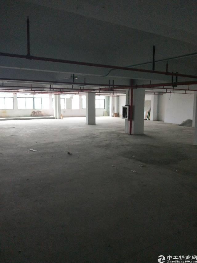 公明新出楼上630㎡标准厂房带装修