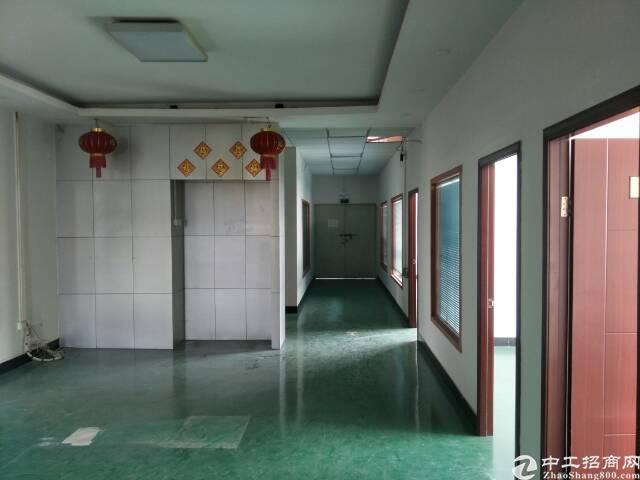 公明楼上少有的厂房带精装修办公室