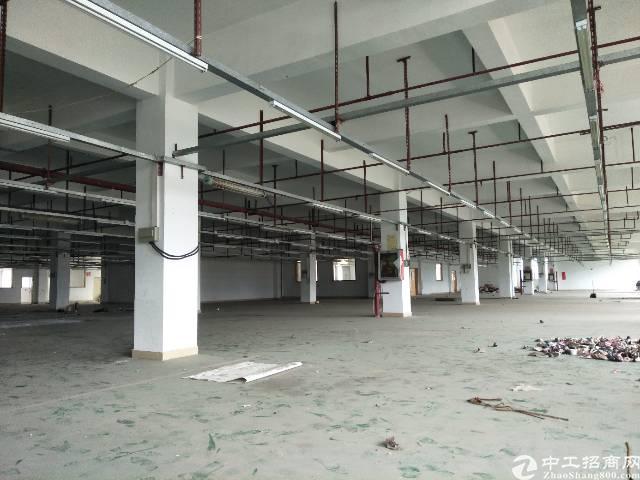 横岗带喷淋整层2800平厂房出租价格19块横坪快线旁