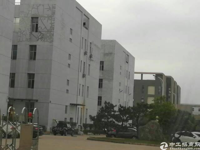 深圳龙岗优质项目出售,适合自用投资