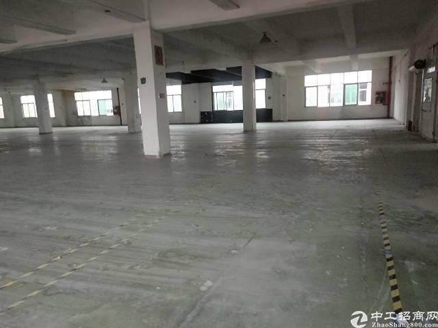 福永和平新出楼上一整层标准厂房,大小可分,适合各种行业