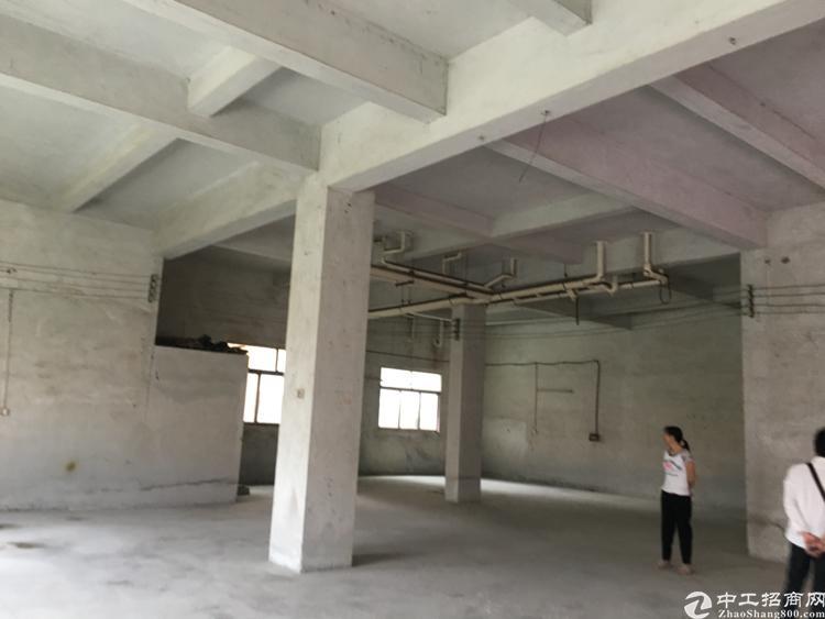 高埗镇标准厂房出租