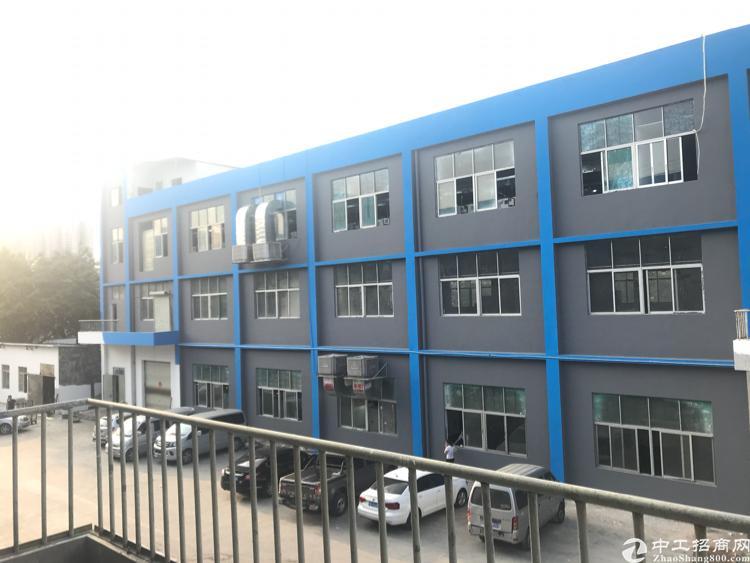 松岗楼岗中心区新出厂房带红本独院厂房4800平方
