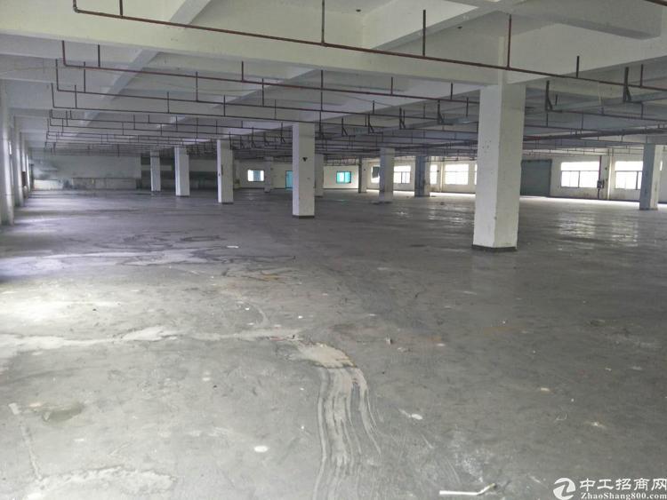 高埗镇工业园区花园式标准厂房