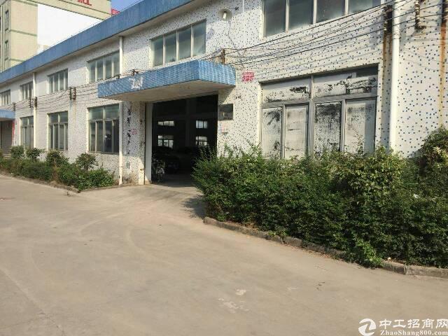 (一楼钢结构)坪山坑梓龙田8米钢结构1300平招租