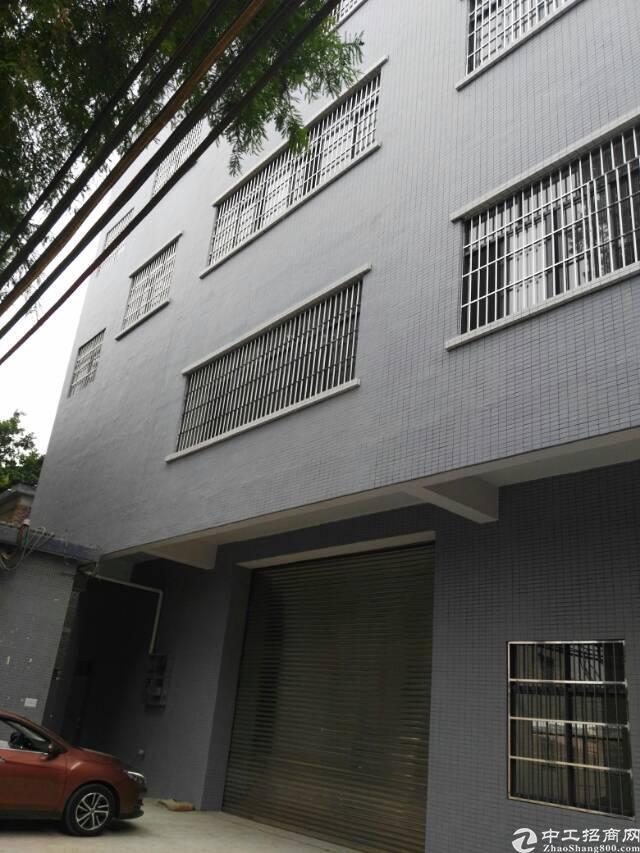 高埗镇全新独门独院四层标准厂房出租