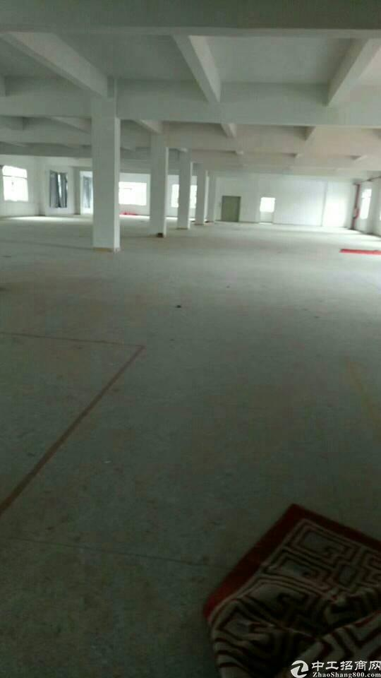 横岗新出整层2000平米标准厂房出租