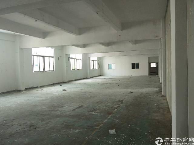 龙岗厂房出租2000平带装修办公室