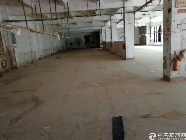 横岗四联新出独院厂房六千四百平方可以分租
