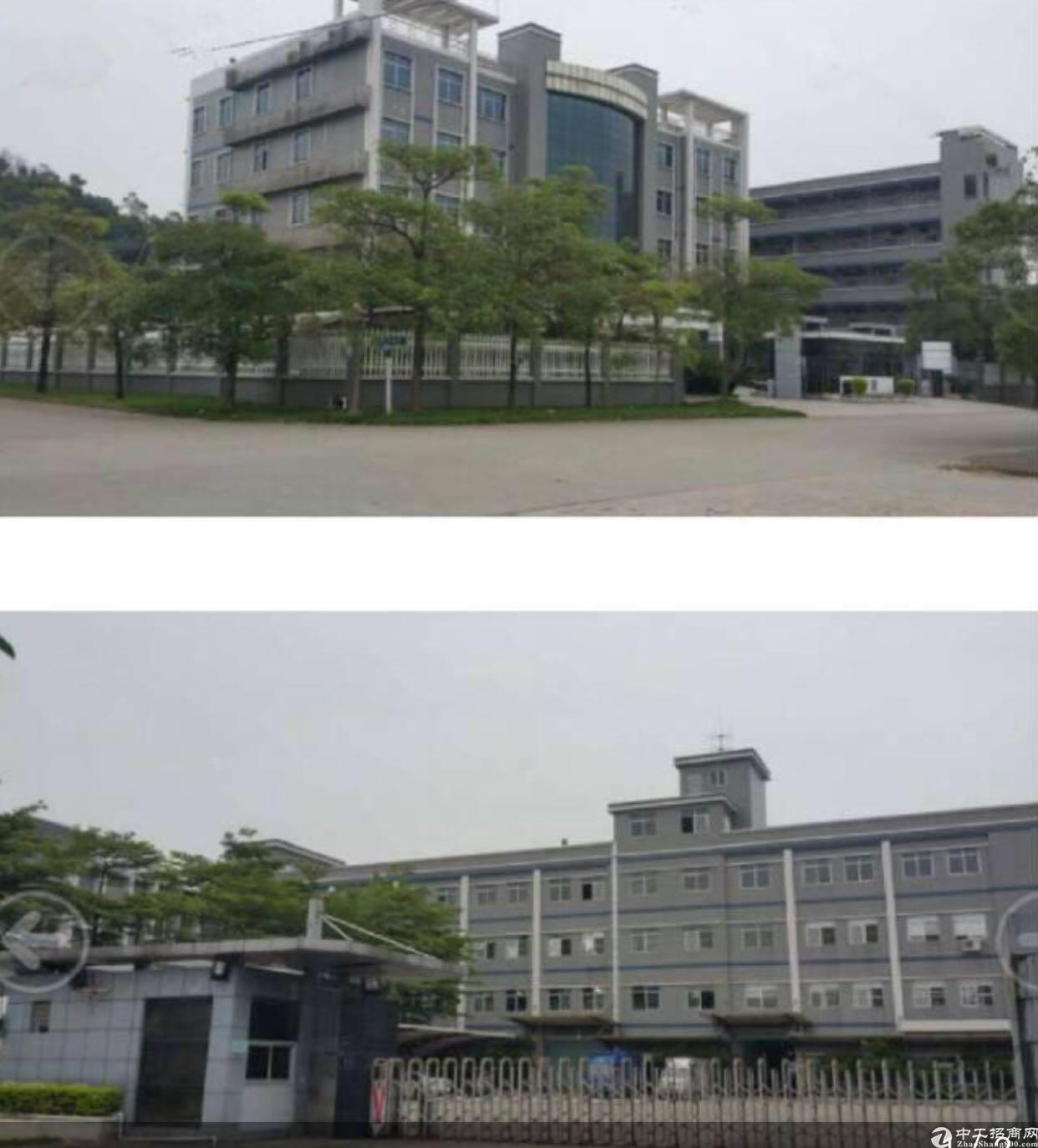 东莞桥头九成新大型靓厂房占地52.8亩低价出售