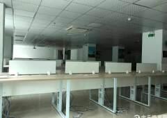 龙华汽车站旁,精装修办公室800平,带家私,