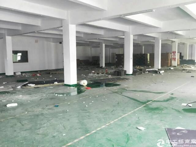 沙井后亭三楼单一层1800平带装修无转让费租金22