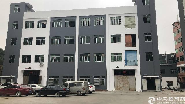 横岗 安良社区 原房东标准独院厂房8912.35平招租