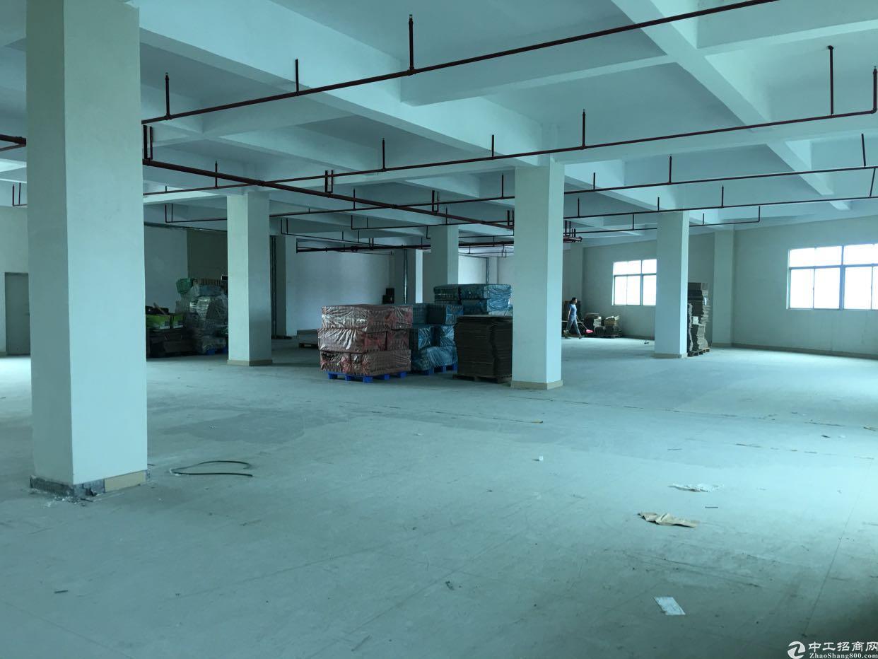 坑梓金沙工业区分租3楼1700平方
