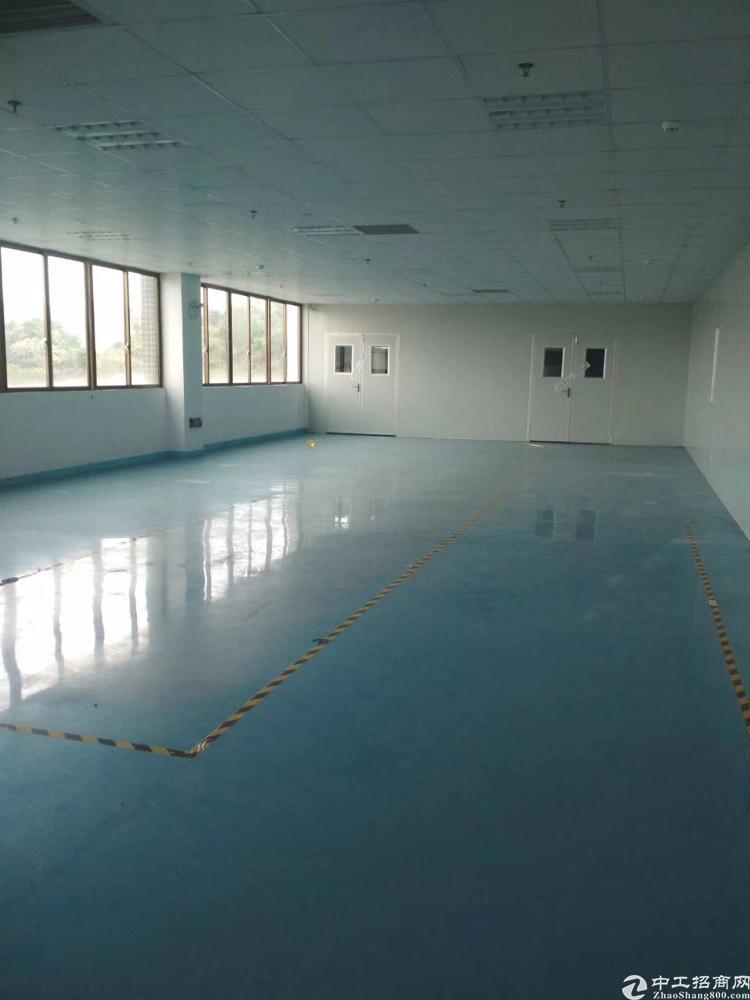 东城区新出500平方办公水电齐全厂房