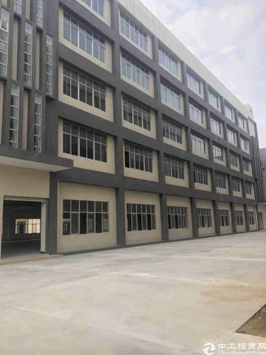 惠阳沙田独院五层约20000平方红本厂房招租形象好