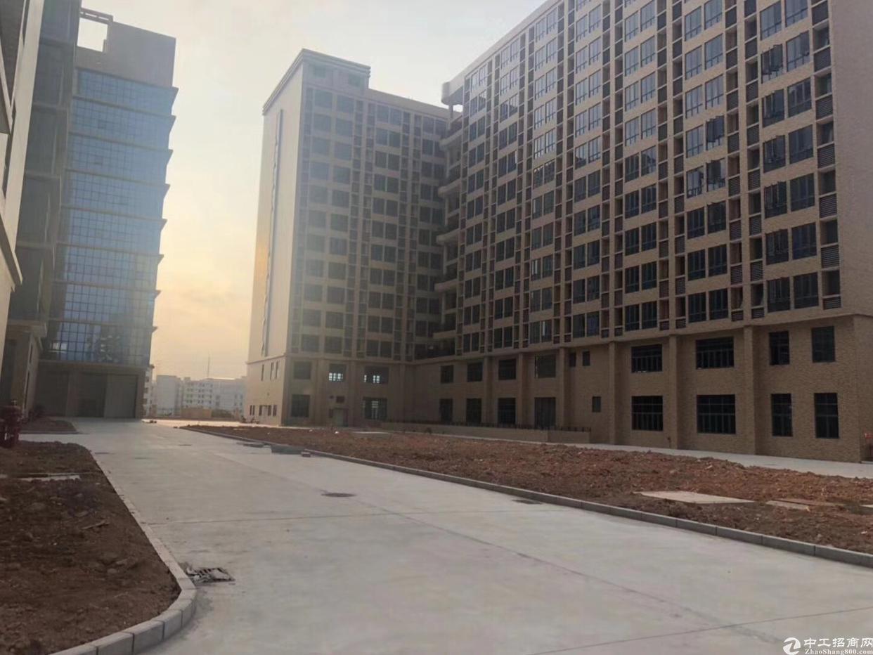 光明新区新出楼上2600平招租