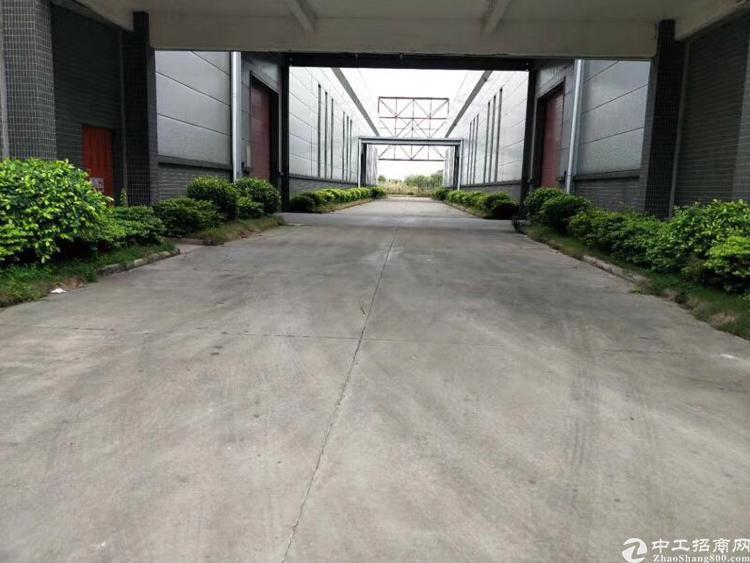 新塘镇滴水12米单一层厂房-图5