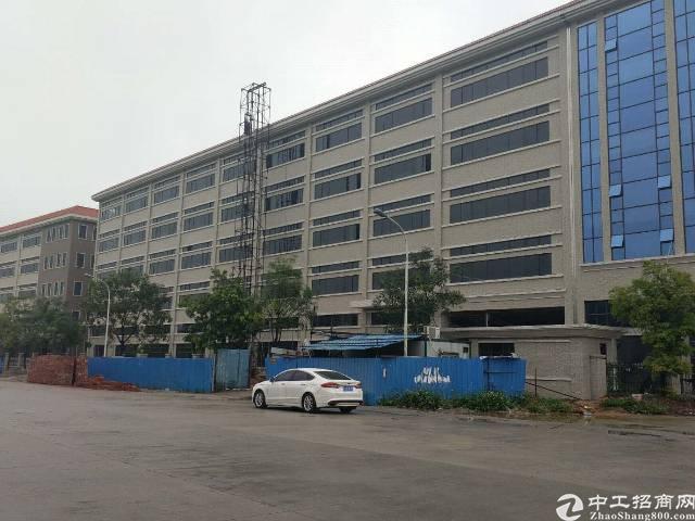 国土证厂房16000平方出租有办公楼