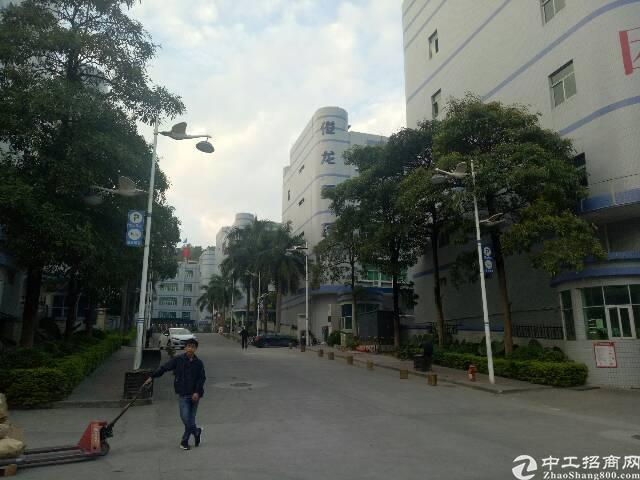 福永凤凰楼上700平米带装修不要转让费厂房出租