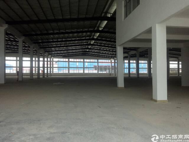 陈江主干道边分租2000平钢构带办公室装修。