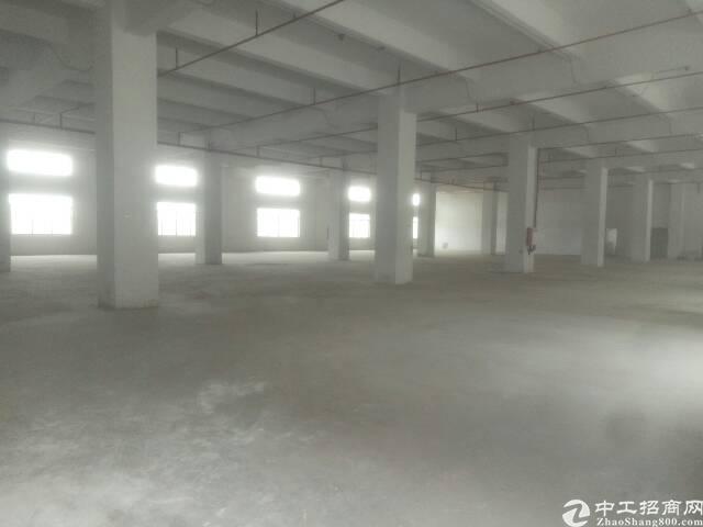 黄江镇全新标准厂房12000平米招租