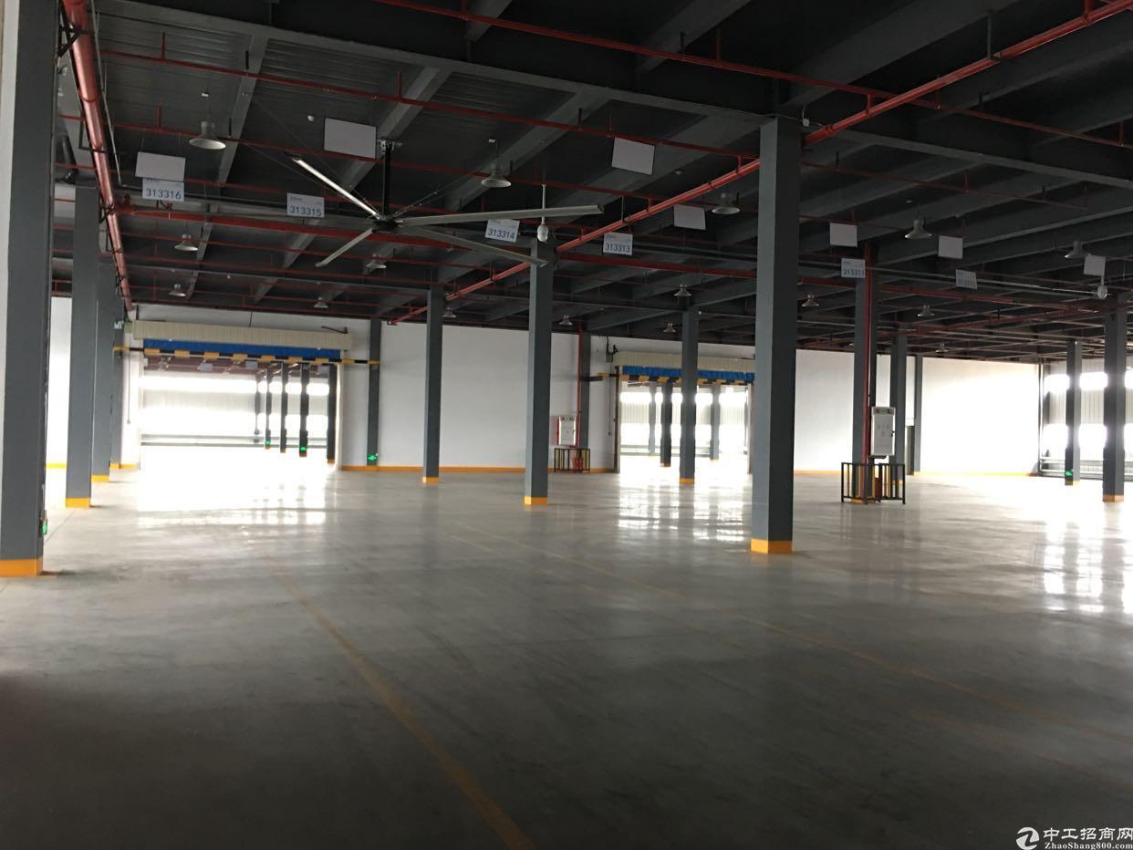 东莞靠深圳清溪上市公司自建3万平米红本物流园仓库出租