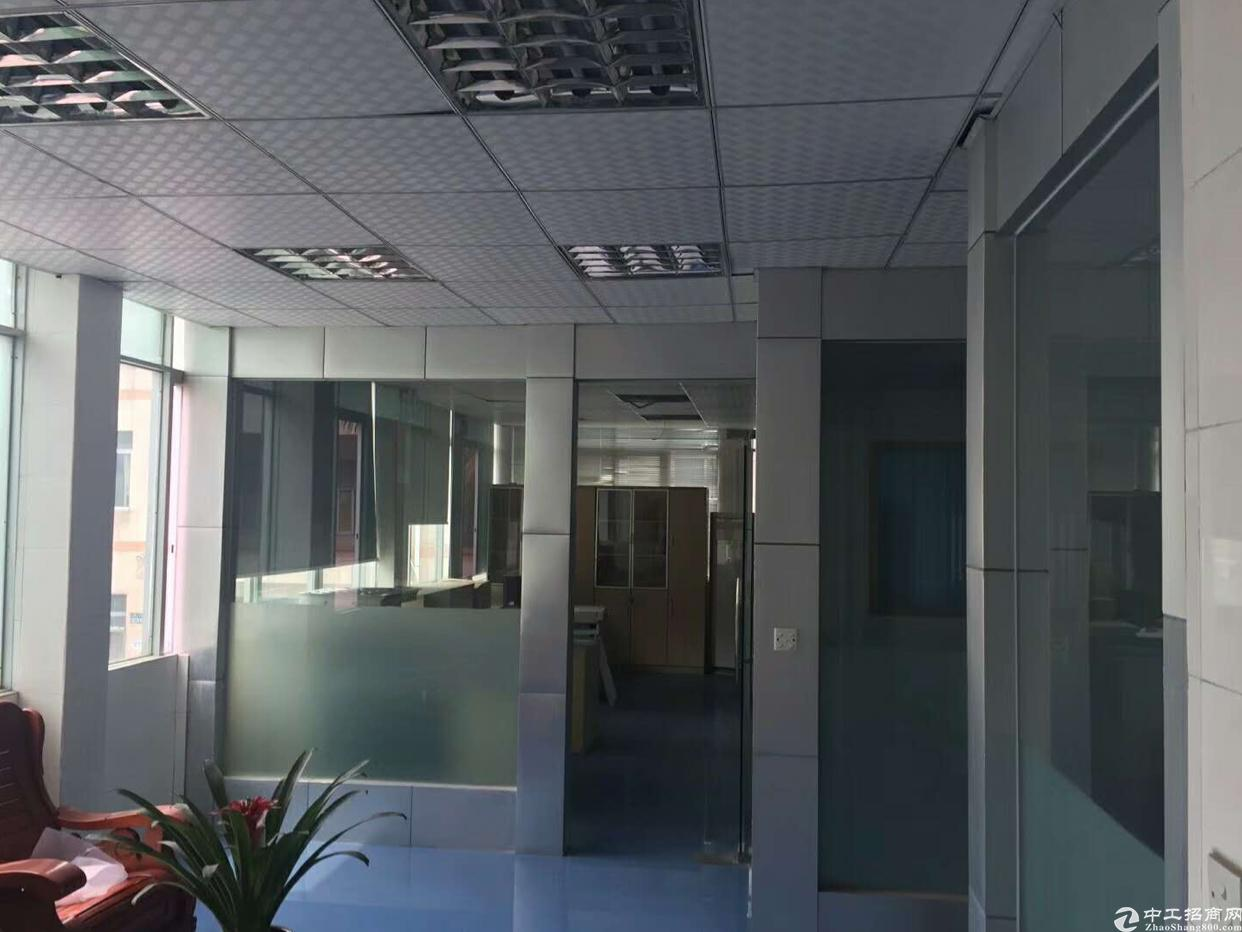 常平新出独立办公楼1到2层480平方出租
