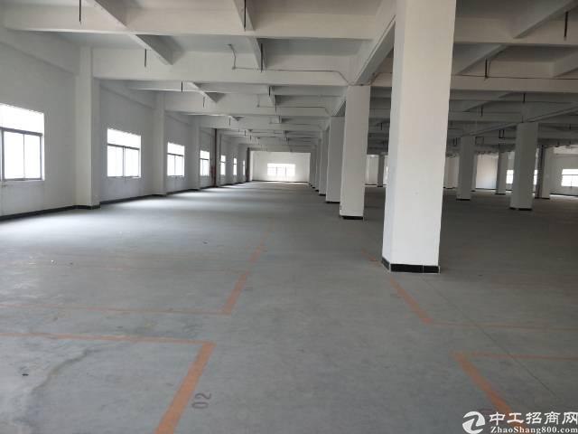 长安标注重工业厂房,一楼6.5米高,二楼5.5米高