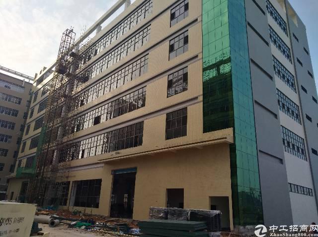 靠深圳全新厂房,大小可以分租.有喷淋