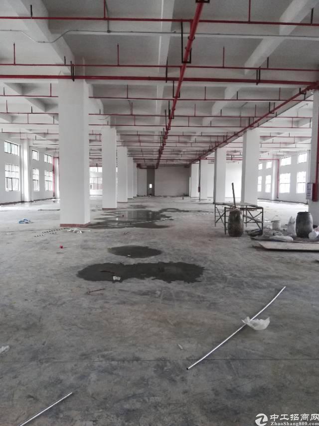 长安新出6米超高全新厂房出租