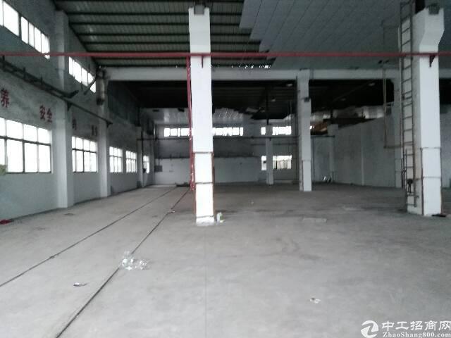 东莞长安10米高可分租钢构