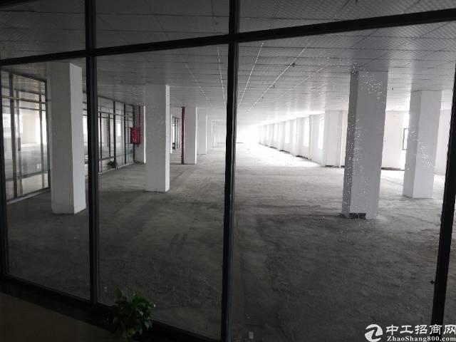 长安厦边新出精装修厂房出租可分租
