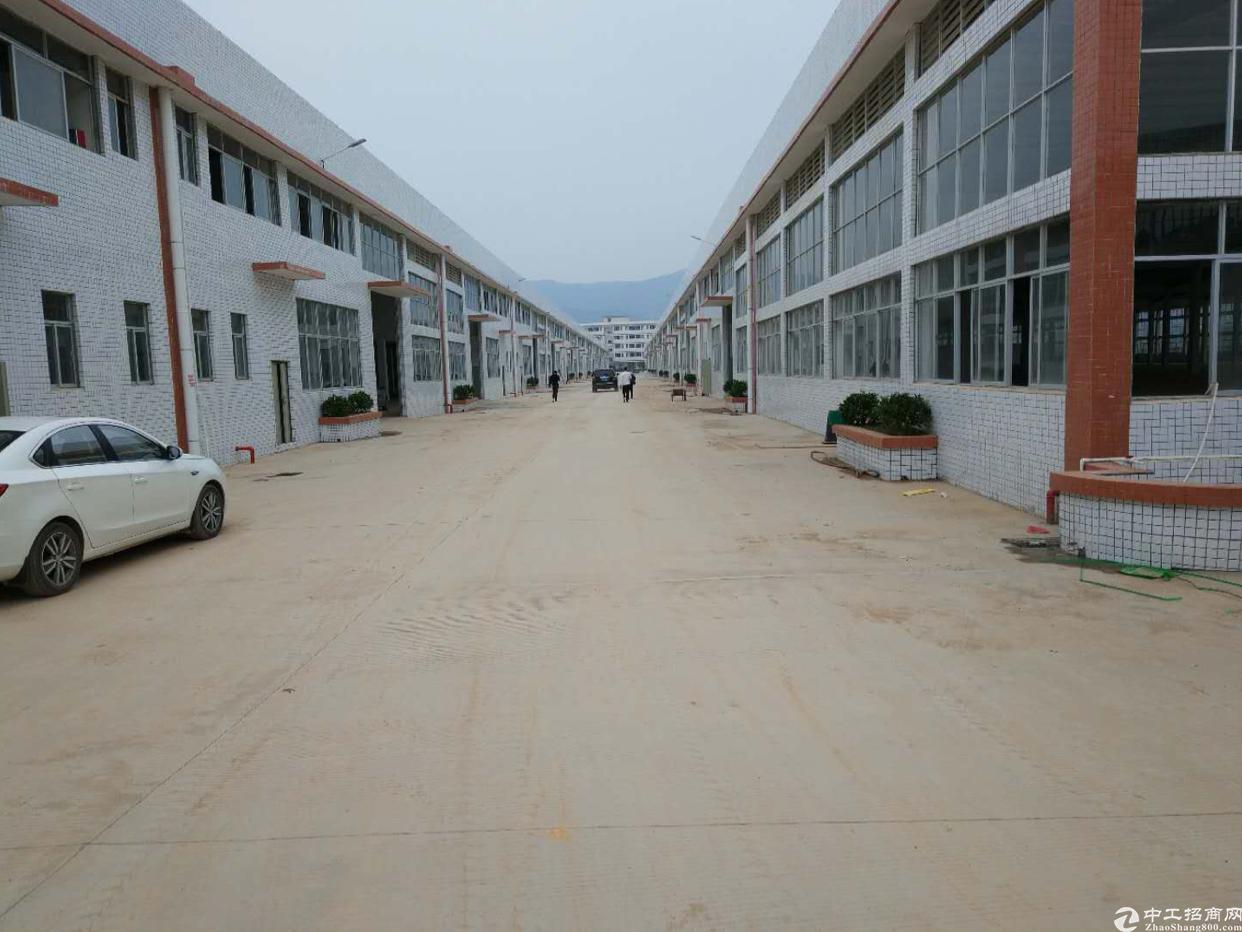 仲恺高新区钢构12000平方可分租可做污染