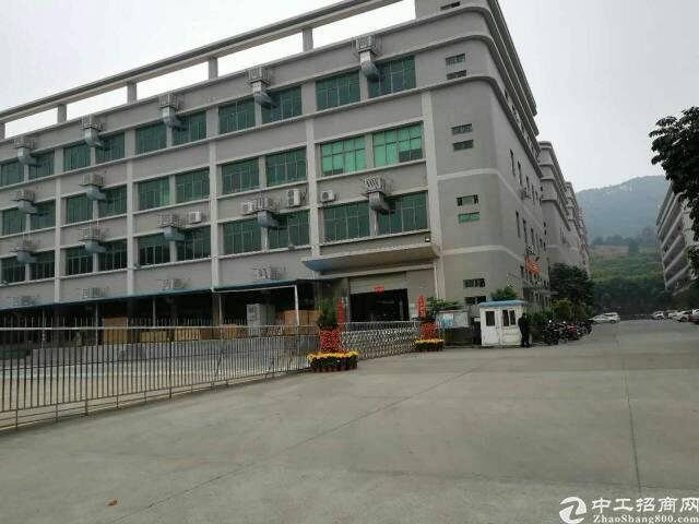 福永凤凰楼上3200平米带装修厂房出租