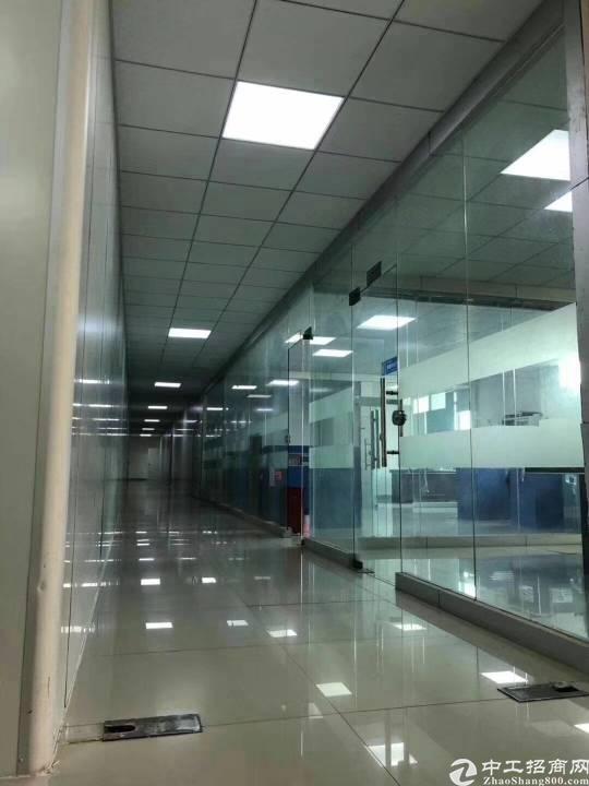 观澜靠龙华和坂田新出带办公室豪华装修厂房1400平米出租
