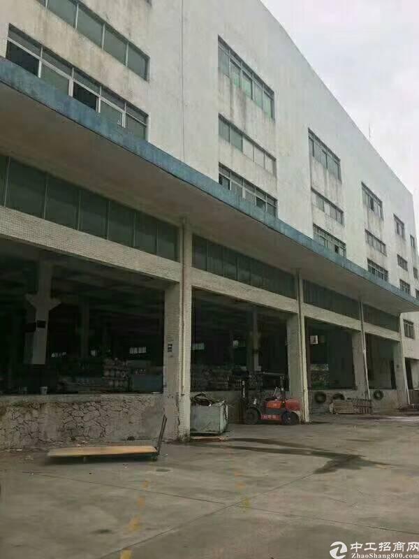坪山高铁站附近新出一楼6米高厂房