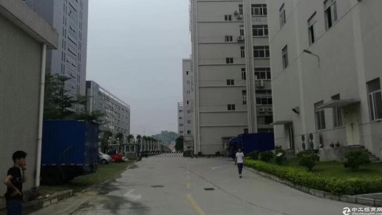石岩塘头大型工业园独栋28000平米招租不分租