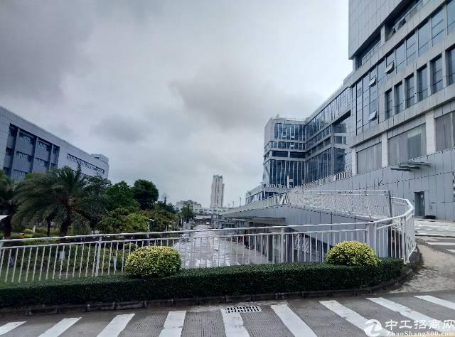 龙岗宝龙新出商业楼4万平米