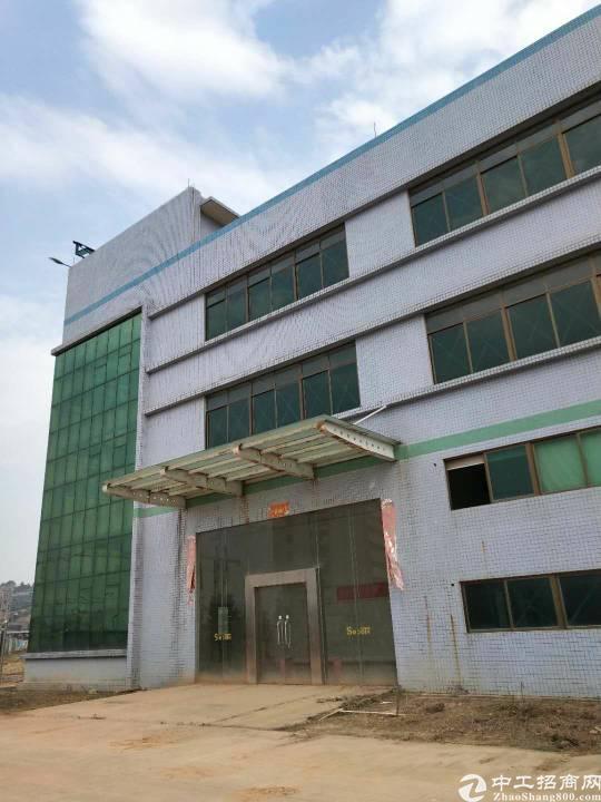 惠州沥林镇原房东标准厂房招租