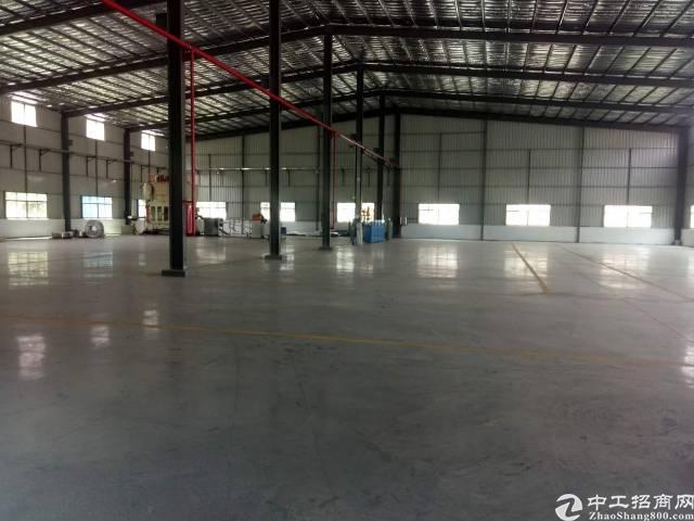 仲恺平南工业区钢构厂房1200平米招租