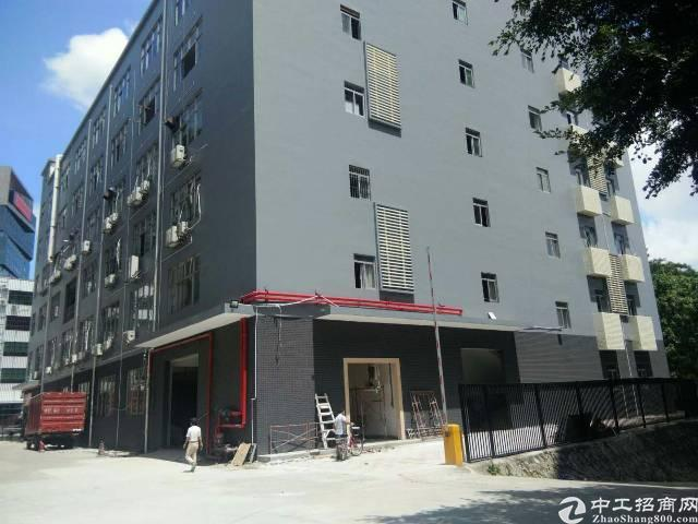 西丽366大街附近楼上458平米带装修厂房出租
