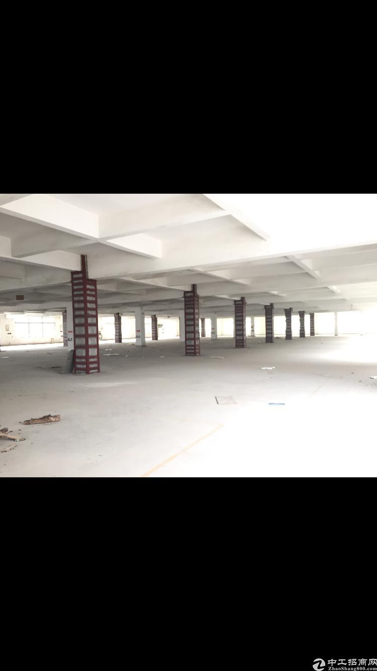 常平工业园区内 2-3楼每层3900m²