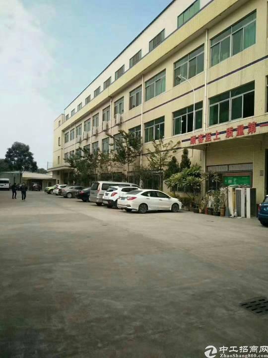 万江新出新村一楼标准厂房1500,可分租,有配套宿舍