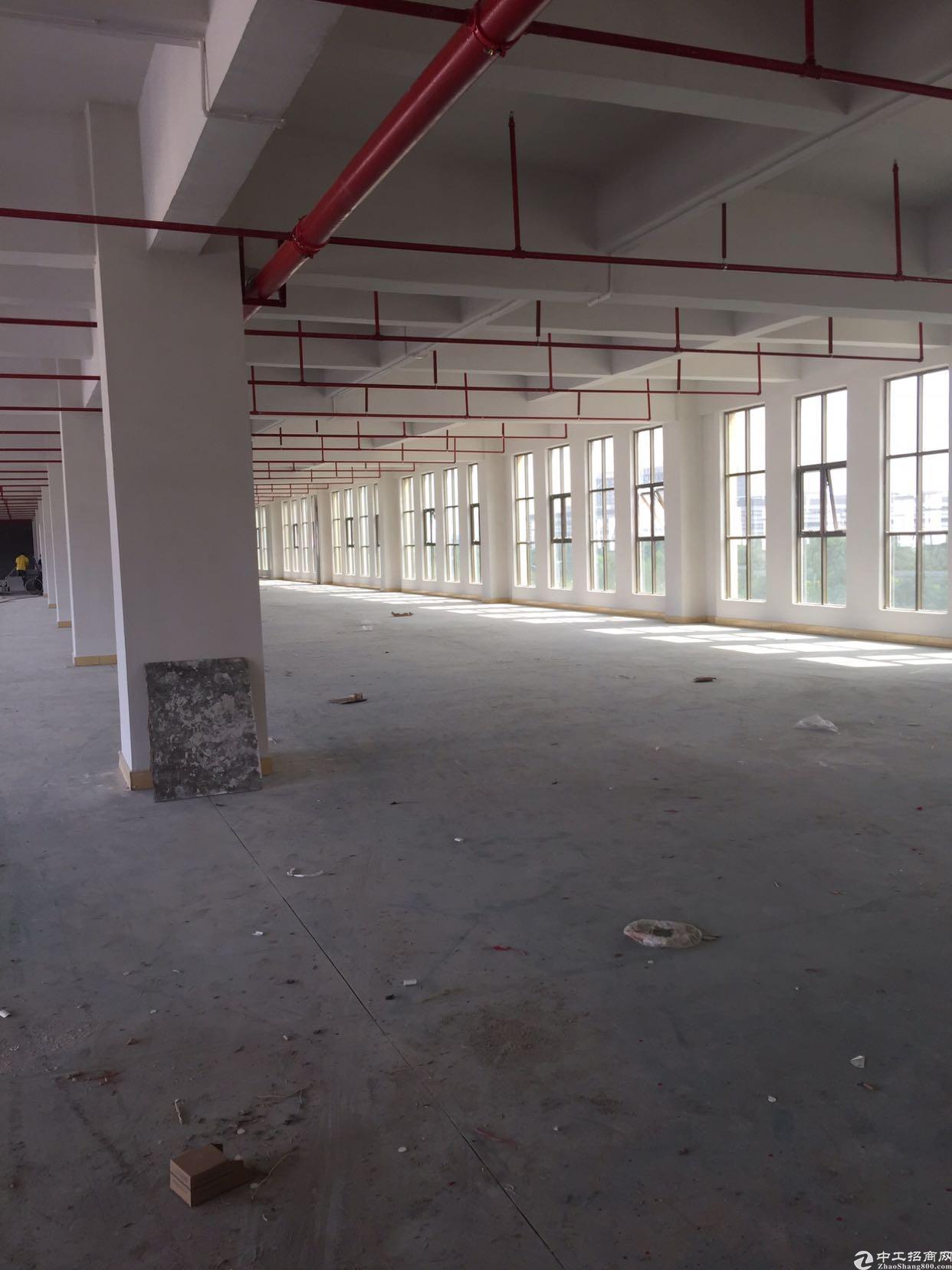 石排镇一栋六层新厂房
