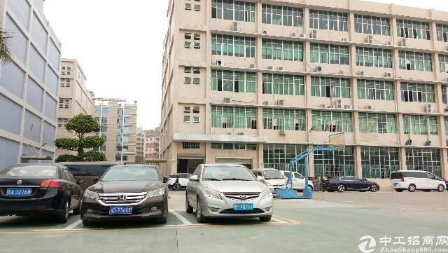 龙华大浪成熟大型园区新出一楼1100平带装修厂房层高6米