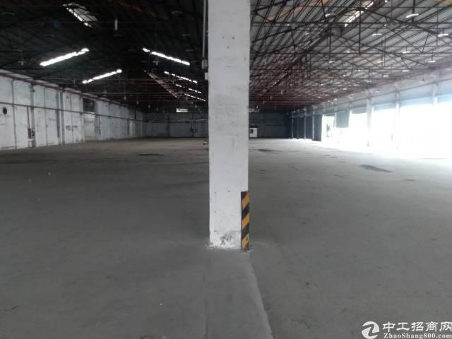 龙华清湖新出7000平钢构招租
