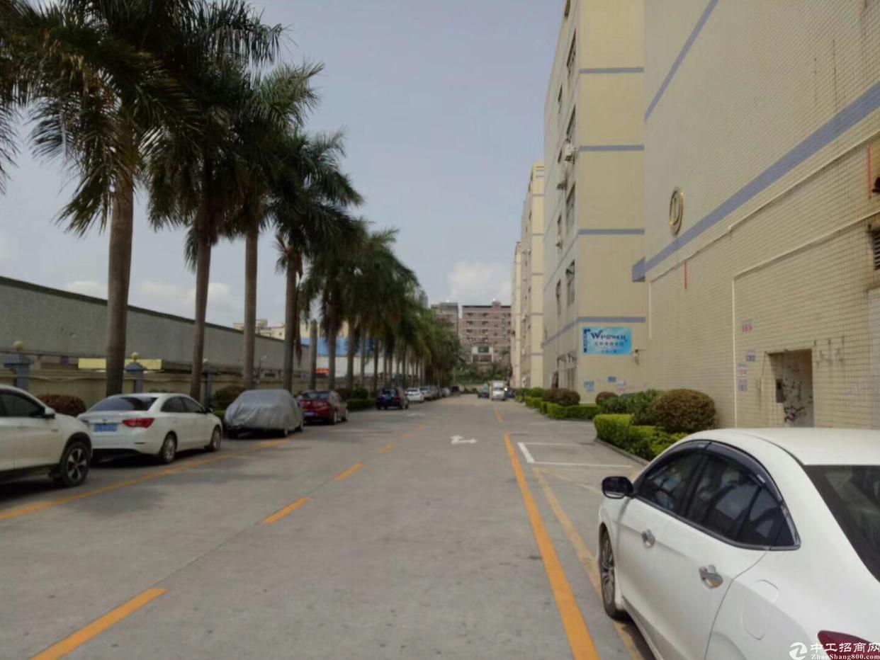 龙华清平高速口原房东整栋6000平,可分租