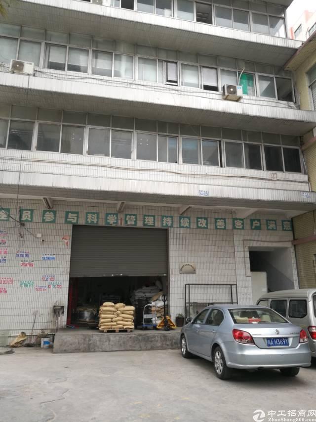 公明新出一楼530平方厂房出租。