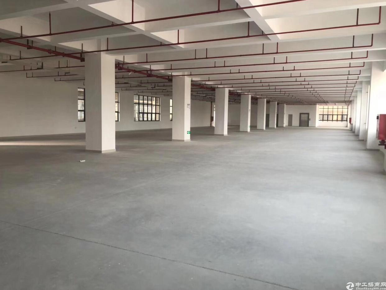 光明新区原房东5万平米厂房直租